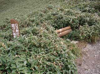 2-2005-10-16-11-32-111.jpg