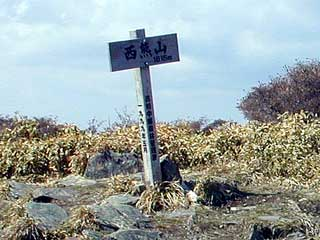 nisikuma-2001.jpg