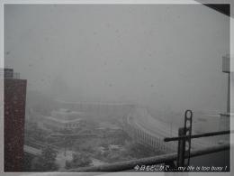 130114-1雪