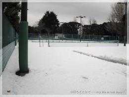 130116-1除雪