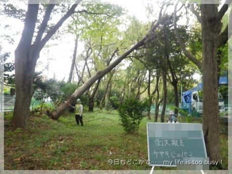 131017-3台風