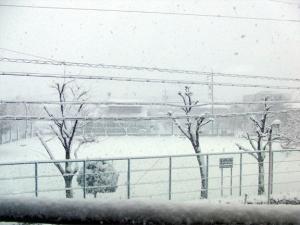 2011-01-16_001.jpg