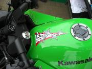 56design_Ninja 250R_07