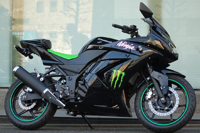 SCS_Ninja_Monster