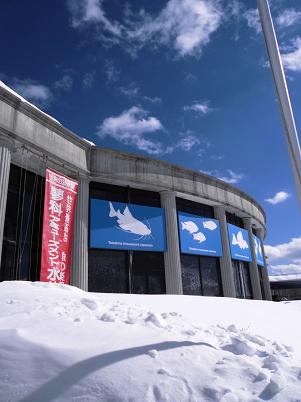 天空の水族館
