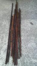 煤がかりは申し分ないのですが、女竹と比較すると、真竹は節間が短いですね・・・