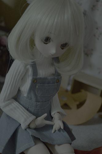 s2-DSC_0450.jpg