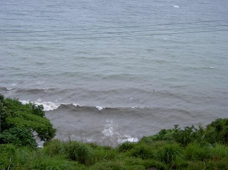 谷から泥水が流入して濁った海