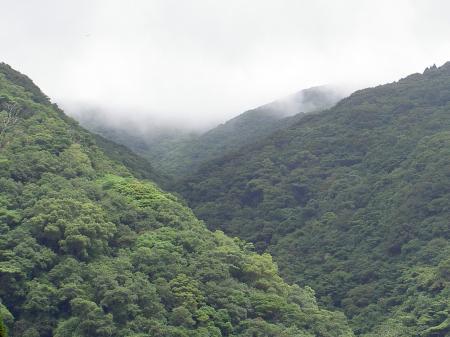 山には雲がかかる