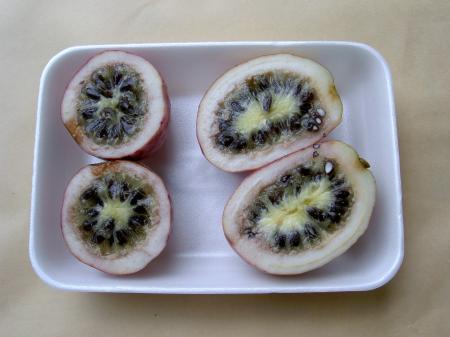 ムベの果実の断面