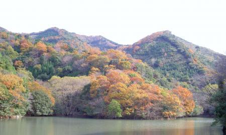 諭鶴羽山系の紅葉