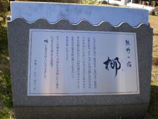 P3300106.jpg