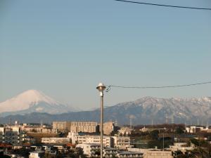 今日の お山