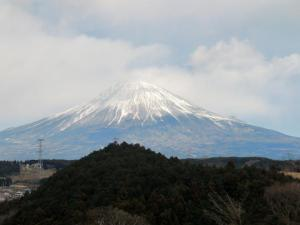 ☆柚鳥富士