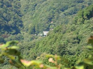 大山寺が見える