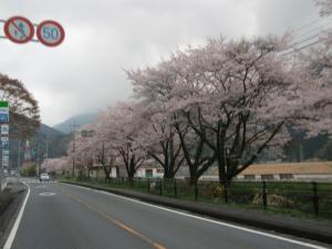 富士川沿い