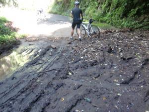 浅間山林道のトラップ