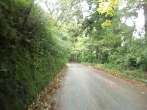 A B プチ林道