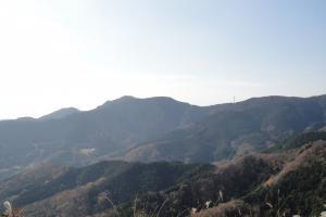 仁ヶ久保林道の風景