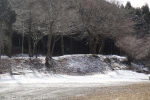 裏庭は雪化粧