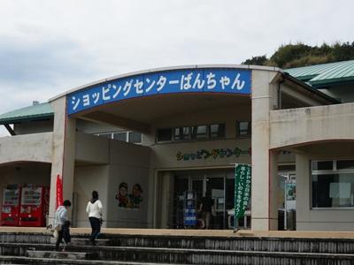 IMGP2008.jpg
