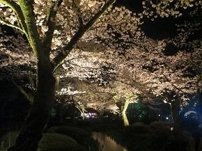 kenrokuen-14.jpg