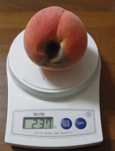 140913-黄桃