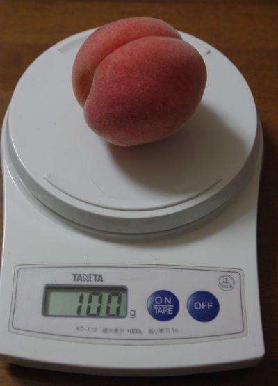140914-3 桃水