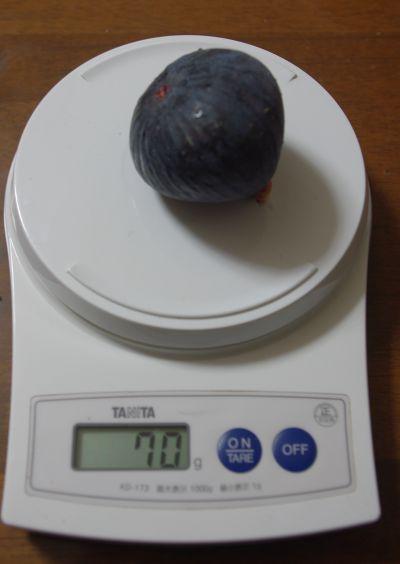 141004-ヌアールドカロン2