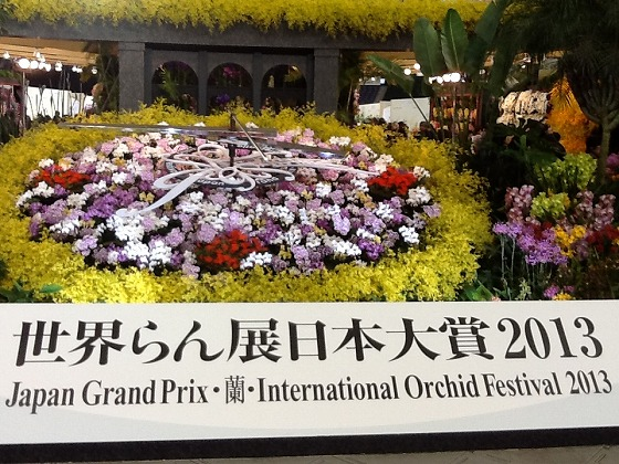 Intl Orchid Festival Feb20th 2013x4