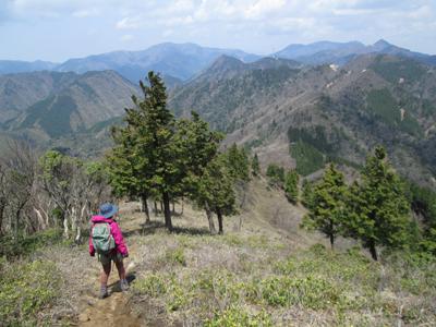 仙ヶ岳~宮指路岳(946m)ヤケキ谷コース|三重県|2013/4/27