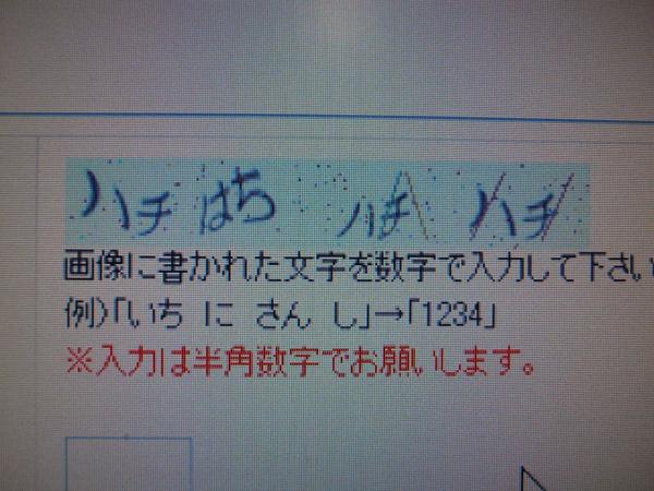 _0019418.jpg