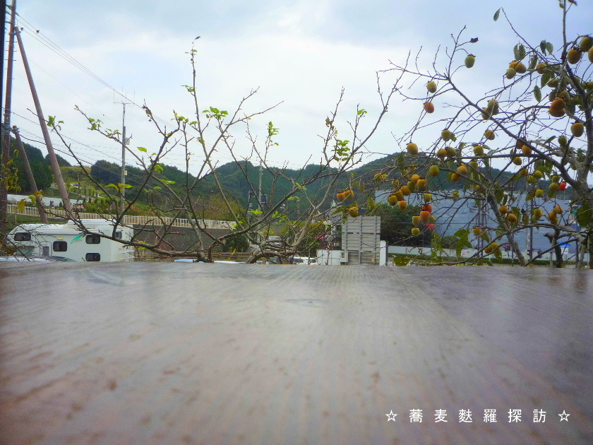3.島田市 蕎ノ字 (テーブル席からの景色1)