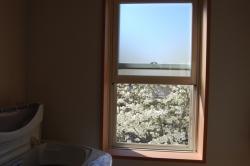 窓辺-08