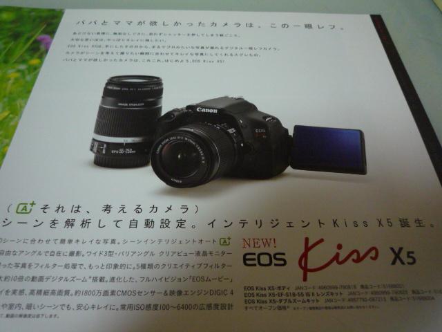 P1020339.jpg
