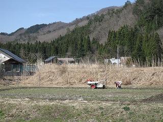 20100410生杉 023