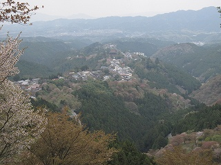 20100414吉野山 016