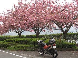 20100430バイク琵琶湖一周 004