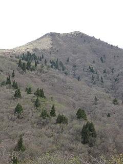 20100509武奈ヶ岳 024