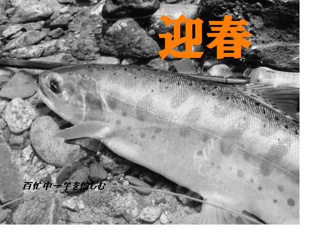 blog年賀