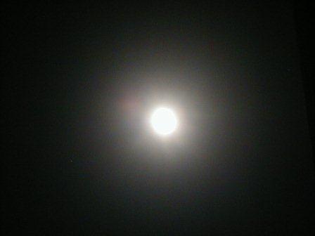 20110916-1.jpg