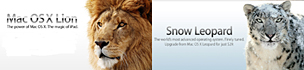 Lion vs Snow Leopard02