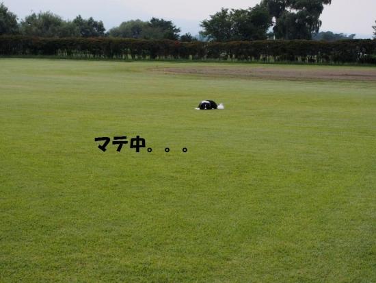20140915_06.jpg
