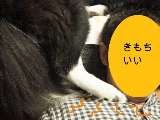 20141011_7.jpg