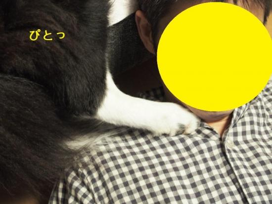 20141011_8.jpg