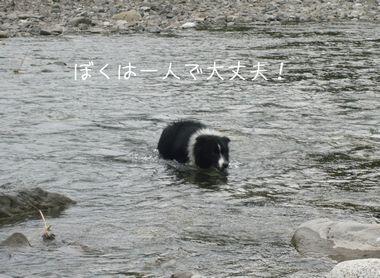 2011年7月31日セト河原にて 3