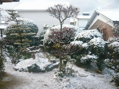 セト初めての雪体験4