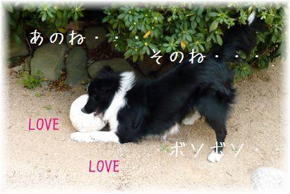 LOVE_20110406173701.jpg