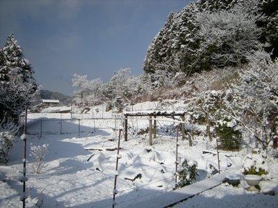 1-156789おおhcvびうぢ