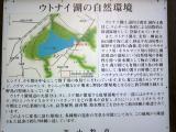 ウトナイ湖(4)